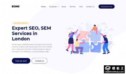 SEO网络营销服务展示响应式网页模板