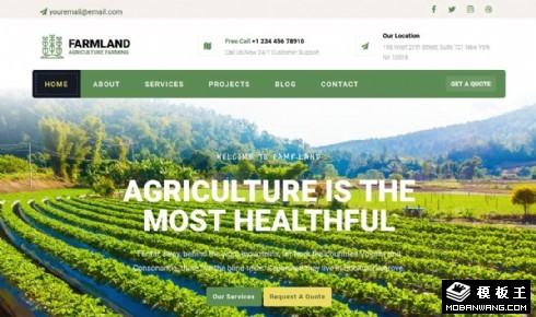 农业生产项目响应式网页模板